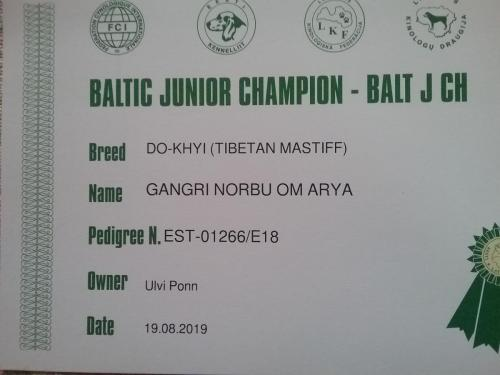 BALTI JUUNIOR TŠEMPION